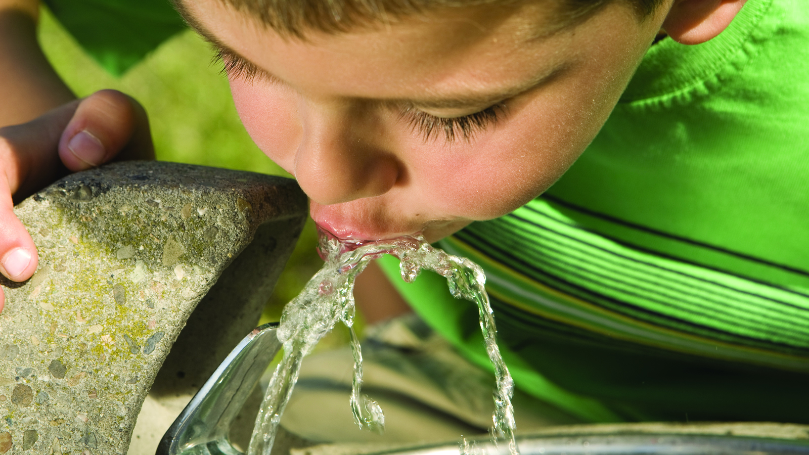 <h4>Clean Water &amp; Air</h4><h5>Prolonged exposure to lead can negatively impact learning, growth and behavior. But research shows lead contamination in water fixtures in schools across Montana. No parent should have to worry that the drinking water at their child's school could contain lead. That's why we're working to Get the Lead Out of Montana's schools. <a href='/feature/mte/clean-water-air'>More...</a></h5>